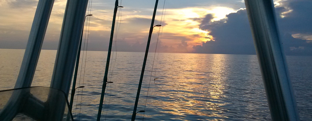 fishing charters offshore