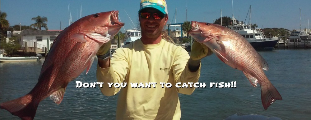 Daytona beach fishing charters captain leon for Fishing charters daytona beach florida